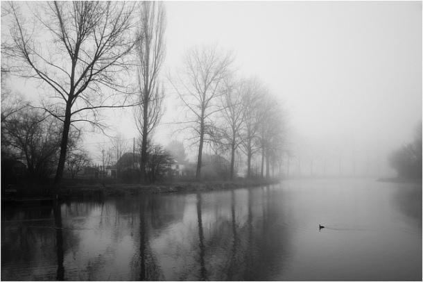 Photo Asapix - Scène de brouillard - Appareil Fujifilm X-Pro1XF focale 18mm - ouverture f/6.4 - Temps de pose 1/250 - ISO 400